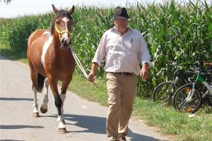 pferdehandlung_maier01